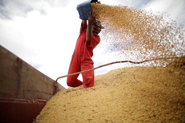 'Sojabonen zijn krachtig Chinees wapen in handelsoorlog met VS'