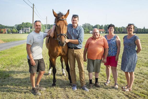 500 paarden te kijk bij Rodenbachruiters in Rumbeke
