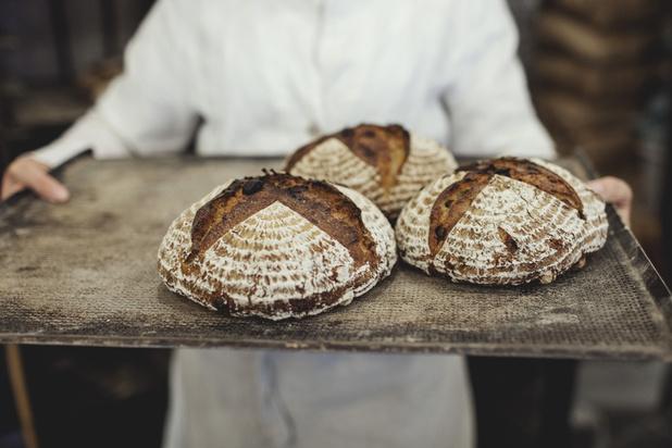 Plus nutritif, plus durable, moins énergivore: les Belges cherchent la recette du pain de demain