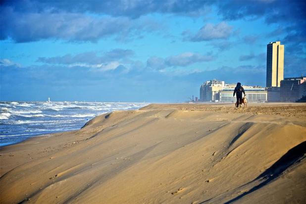 Onderzoek toont aan: zandopspuitingen strand zijn nuttig