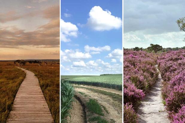 Toerist in eigen land: strek de benen tijdens deze prachtige natuurwandelingen