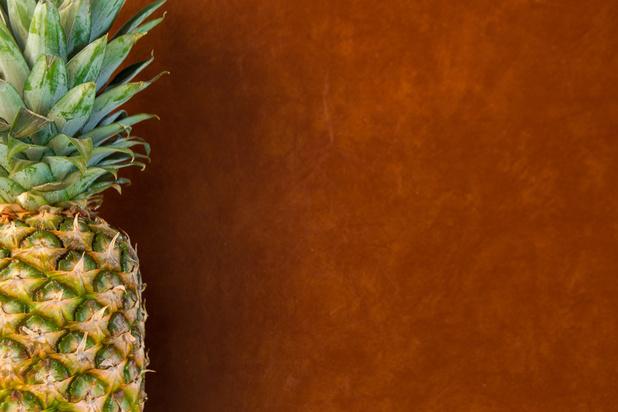 Du cuir de pomme, d'ananas ou de champignon pour remplacer le cuir animal