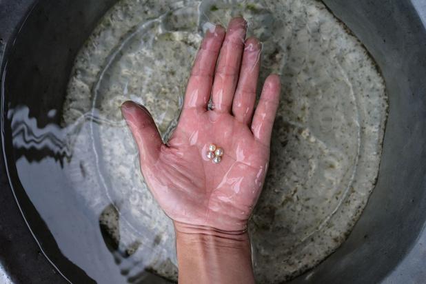 La résurrection d'une perle millénaire (en images)