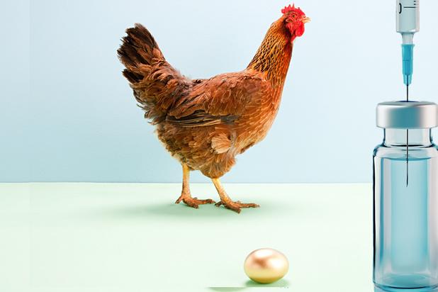 Vaccins covid : la nouvelle poule aux oeufs d'or pour les laboratoires ?