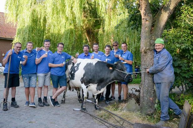 Wie kan snelst koe melken tijdens Waterhoekfeesten in Waregem?