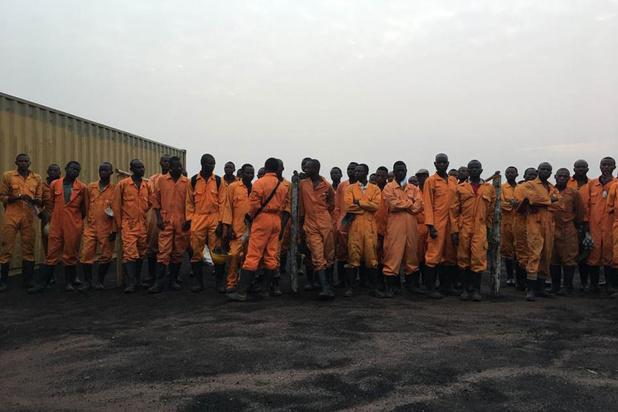 België investeert in omstreden Congolees palmoliebedrijf