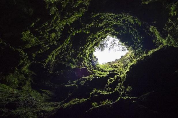 Planète: la seule issue se trouve sous terre, selon certains experts