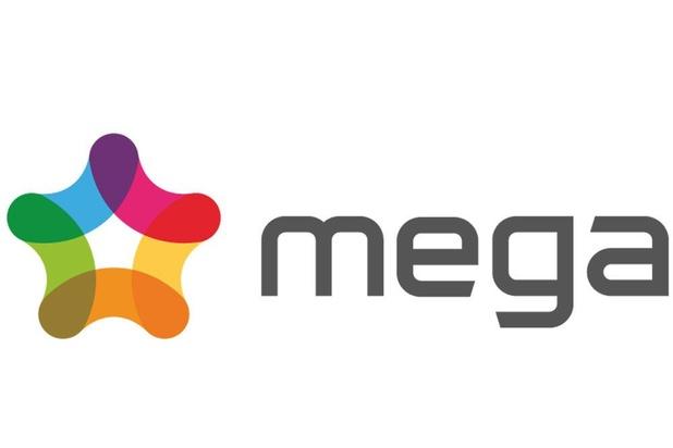 Le nombre de clients du fournisseur d'énergie Mega a quintuplé en deux ans