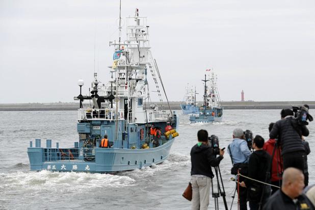 Japan doet na 31 jaar opnieuw aan commerciële walvisvangst