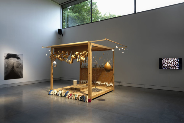 'Nieuw paviljoen in Museum Middelheim: een noodzakelijke aanvulling voor de collectie in open lucht'