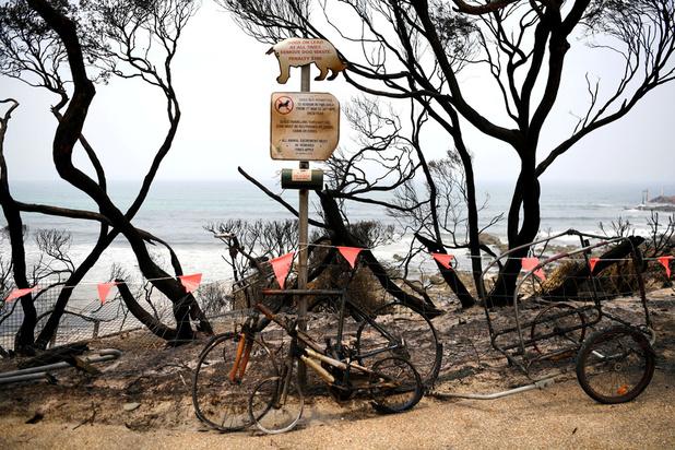 Australië brandt: kwart miljoen mensen moet zuidoostelijk gebied verlaten