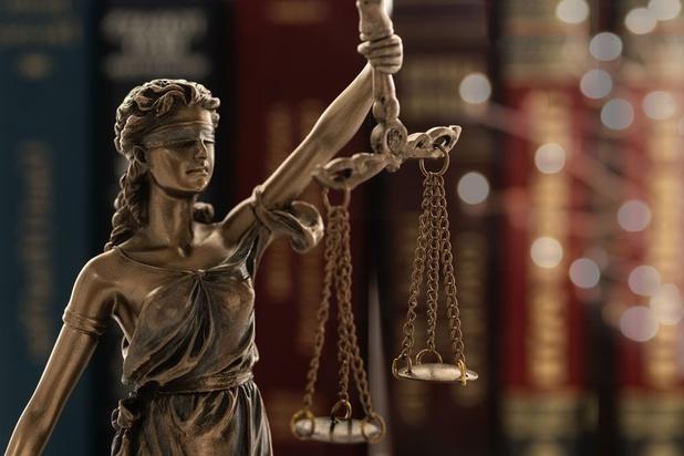 Justice: l'application des lois linguistiques à Bruxelles vire parfois à l'absurde