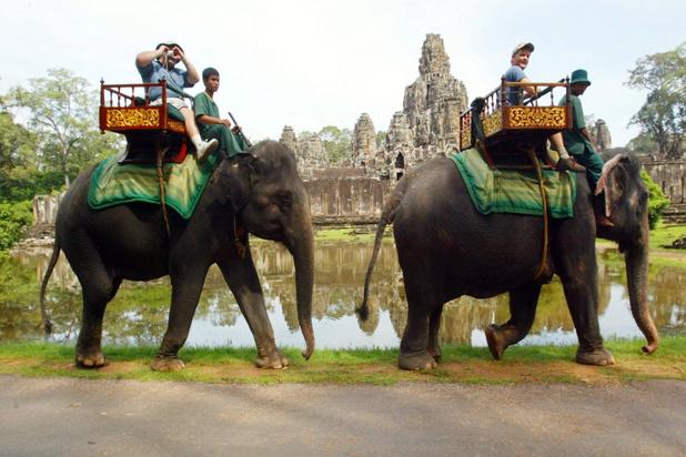 Dit zijn de wreedste toeristische attracties