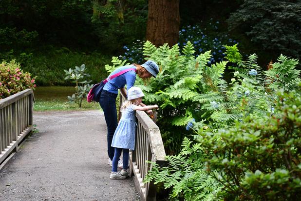 Les enfants au jardin