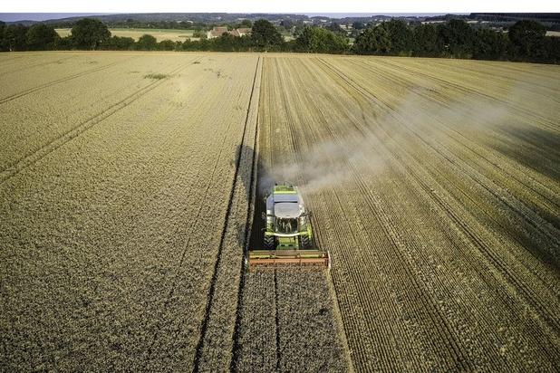 Dans dix ans, l'agriculture utilisera toujours près de 40% des terres de la planète