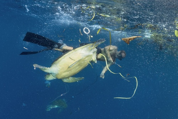 Egypte verbiedt plastic rond de Rode Zee