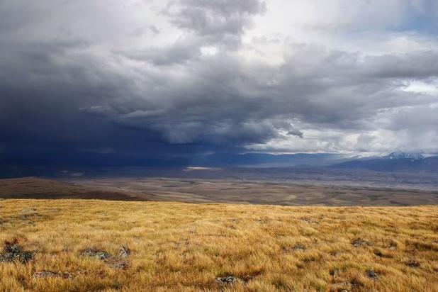 Climat : record de chaleur en Arctique, avec 38 degrés relevés en Sibérie