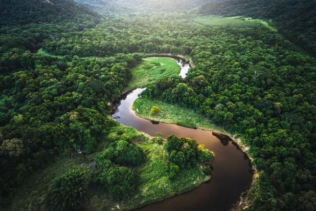 Meer dan helft van de tropische wouden bedreigd door jacht