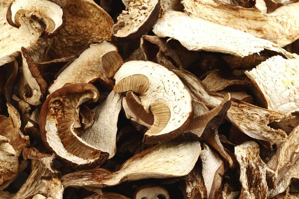 Greenyard verkoopt Nederlandse champignonverwerker