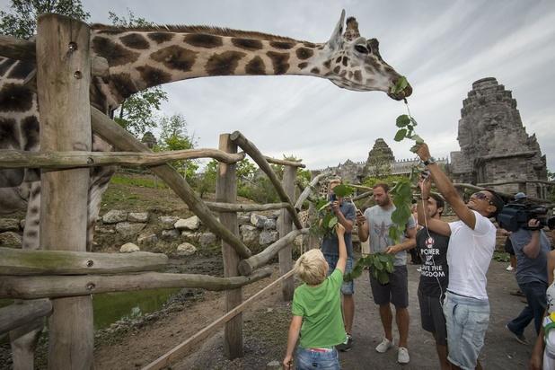 Pas de sorties scolaires dans les zoos: la commune d'Ixelles s'explique