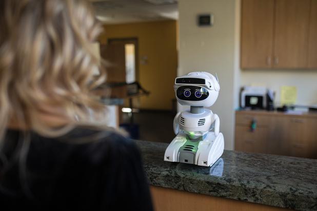 Un robot pour combler la solitude
