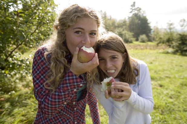 L'incitation est plus efficace que la contrainte pour faire manger des fruits