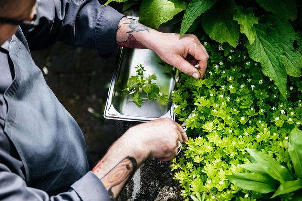 Gastronomie: les plus beaux jardins des chefs