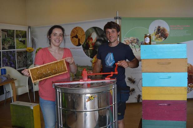 Honing slingeren bij de Damse bijentuin