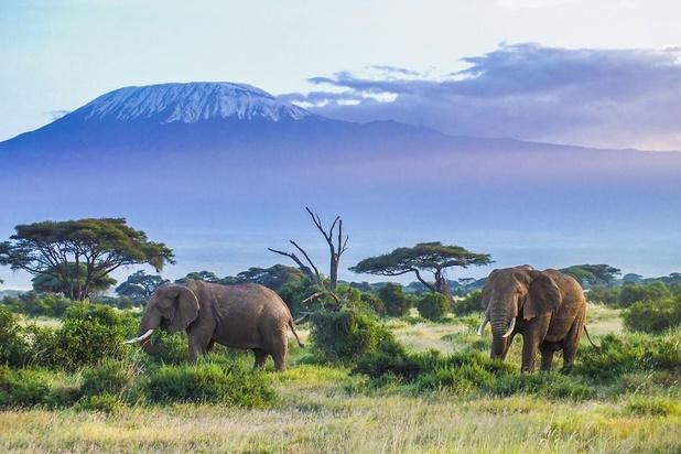 Cinq choses à savoir sur la Tanzanie