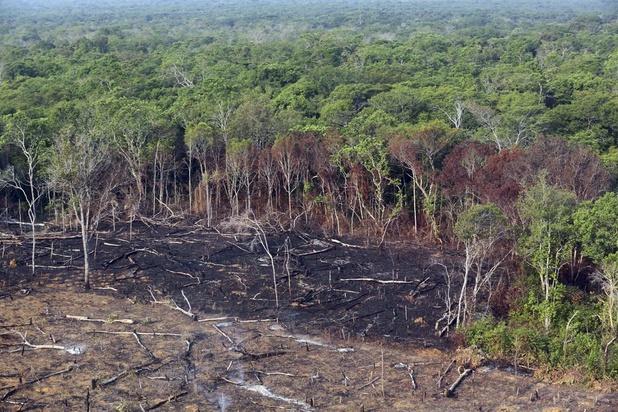 Déforestation multipliée par quatre en juillet sur un an au Brésil