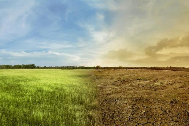 Appels à sauver la nature et le climat en ouverture du congrès mondial de l'UICN
