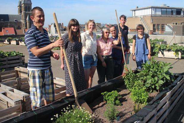 Groenten oogsten op de toren: Oostende heeft samentuin in hogere sferen