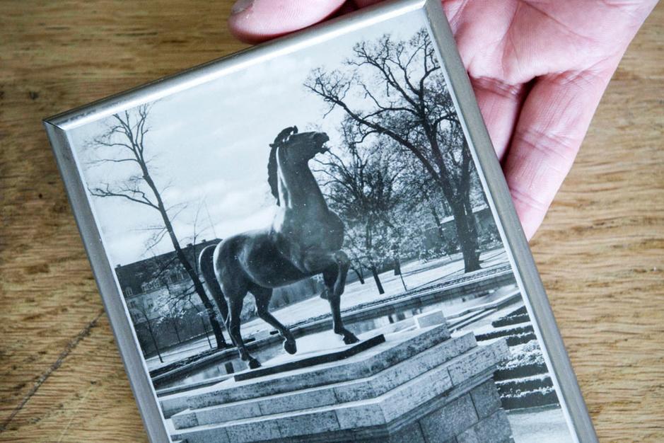 Arthur Brand, de Indiana Jones van de kunstwereld: 'Opeens zag ik het: dit zijn Hitlers paarden!'