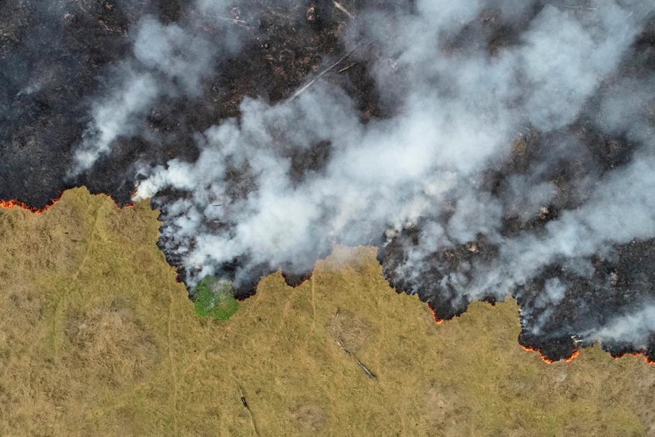 Amazonie : les incendies vus du ciel