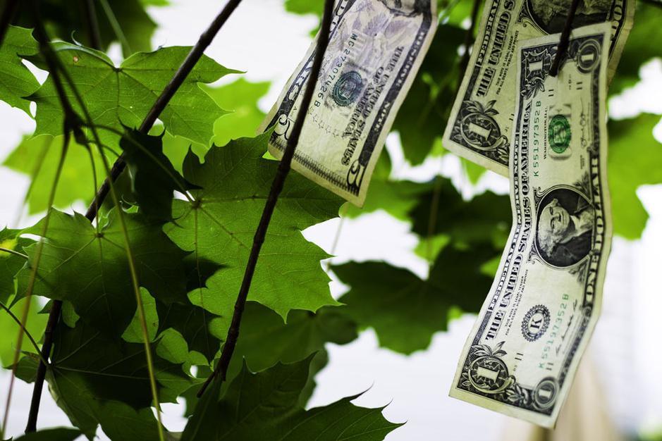 Controversiële Moderne Monetaire Theorie uitgelegd: 'Druk geld bij om de wereld te redden'