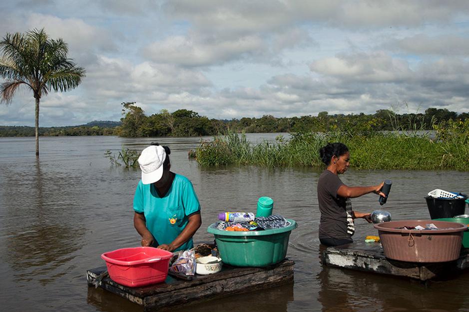 Van cruiseschepen tot sojahandel: het Amazonegebied in Brazilië dreigt in ijltempo te verdwijnen