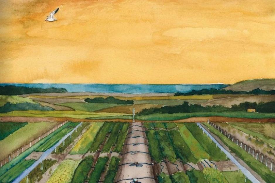 Zoute landen: landbouw op zilte grond