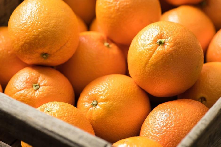 Illegale Afrikaanse dagloners in Almería: uitgeperst voor uw fruit