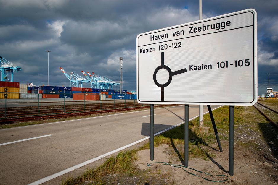 Rik Goetinck (Haven Zeebrugge) over de brexit: 'We zijn goed geplaatst om marktaandeel te winnen'