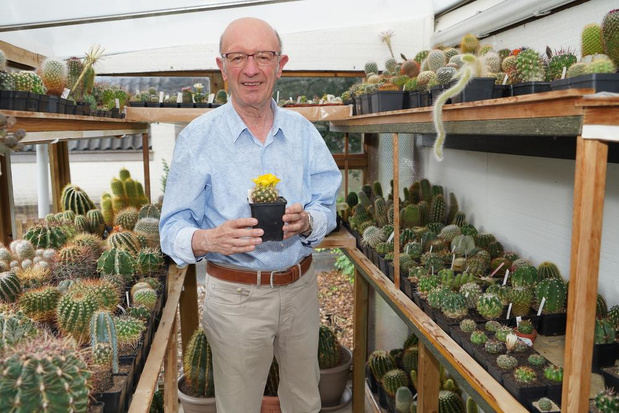 Denis Couckuyt uit Meulebeke heeft al 20 jaar een stekelige hobby