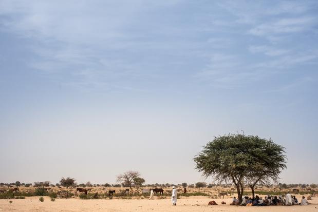 Tsjaad kondigt noodtoestand af in oosten van land na geweld tussen gemeenschappen