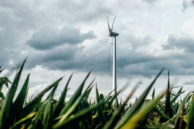Année record pour les nouvelles capacités en énergies renouvelables à travers le monde