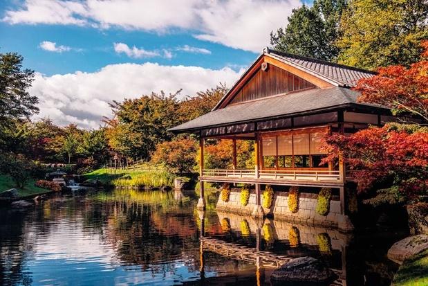 Le jardin japonais d'Hasselt, un petit bout de Soleil-Levant à la belge