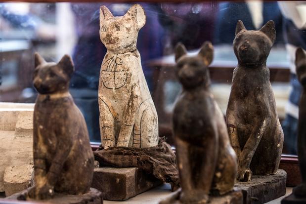 Archeologen vinden groot aantal gemummificeerde dieren in Egypte