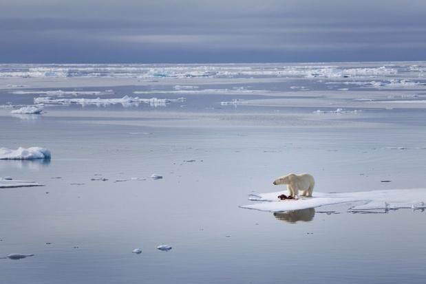 Heeft klimaatfictie een toekomst?
