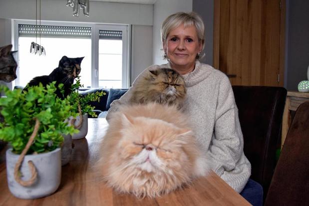 """Annemie Messelis van Katimoe: """"Ik denk er niet aan om die arme diertjes te laten inslapen"""""""