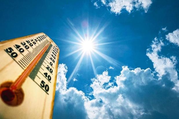 Le record absolu de température en France validé à 46°C
