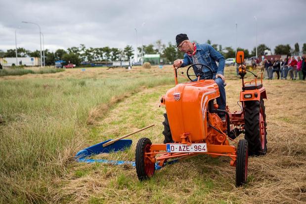 Oude landbouwtechnieken tot leven gewekt in Slijpe tijdens 'Een Dag op het Veld'