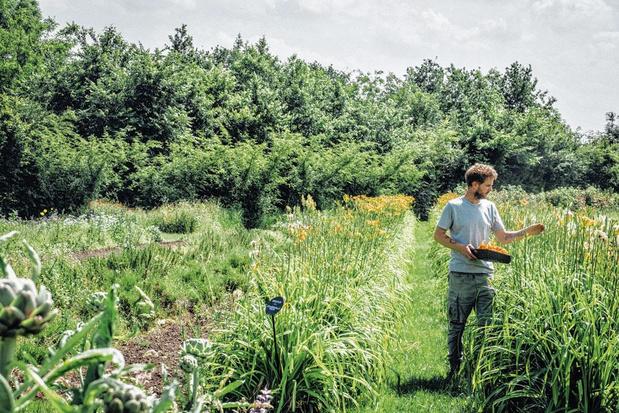 Open voor het publiek: kom snuisteren in de tuin van Hertog Jan