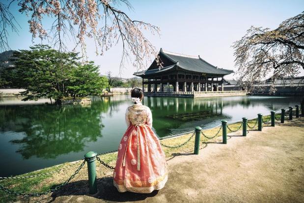 Retour en Corée du Sud, pays du matin clair et frais